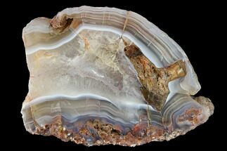 "3.4"" Polished Calandria Agate Slab - Mexico For Sale, #152651"