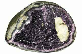 Quartz var. Amethyst - Fossils For Sale - #153600