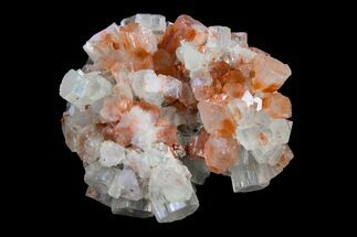 "1.7"" Aragonite Twinned Crystal Cluster - Morocco For Sale, #153797"