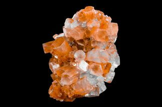 "Buy 1.9"" Aragonite Twinned Crystal Cluster - Morocco - #153787"