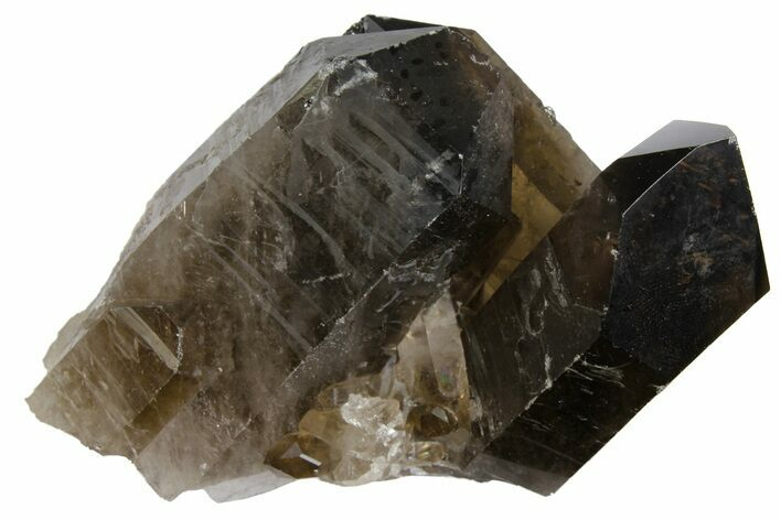 "3.8"" Dark Smoky Quartz Crystal Cluster - Brazil"