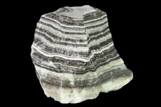 "Buy 4.8"" Free-Standing, Banded Zebra Calcite - Mexico - #155767"
