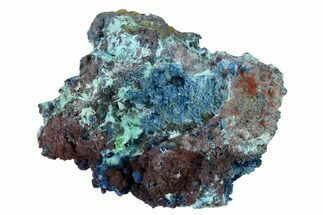 "Buy 1.3"" Shattuckite, Chrysocolla and Ajoite Association - Mexico - #155857"
