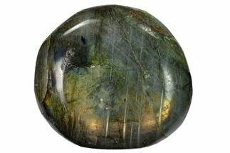 "Buy 2.2"" Flashy, Polished Labradorite Palm Stone - Madagascar - #155701"