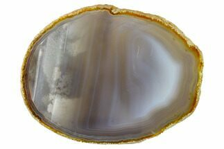 "Buy 6.4"" Polished Brazilian Agate Slice - #156292"