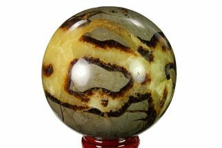 "2.6"" Polished Septarian Sphere - Madagascar For Sale, #154139"