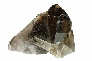 Quartz var. Smoky - Fossils For Sale - #154833