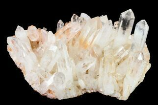"8.9"" Tangerine Quartz Crystal Cluster - Madagascar For Sale, #156941"