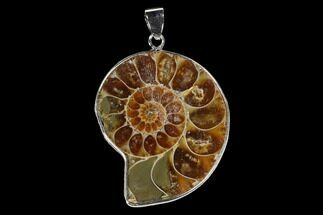 "1.3"" Fossil Ammonite Pendant - 110 Million Years Old For Sale, #151988"