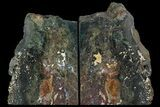 "6.2"" Green Jasper Replaced Petrified Wood Bookends - Oregon - #158883-1"