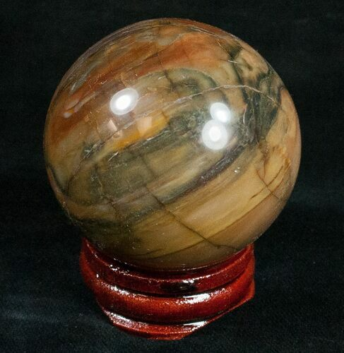 "1.8"" Colorful Petrified Wood Sphere"