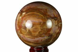 "3.7"" Colorful Petrified Wood Sphere - Madagascar For Sale, #163364"