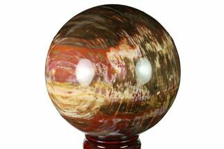 "Buy 4.7"" Colorful Petrified Wood Sphere - Madagascar - #163372"