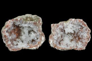 "Buy 1.3"" Keokuk ""Red Rind"" Geode - Iowa - #165754"