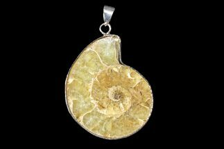 "1.4"" Fossil Ammonite Pendant - 110 Million Years Old For Sale, #166130"