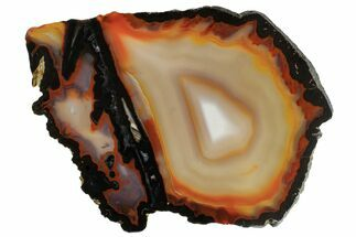 Chalcedony var. Agate - Fossils For Sale - #167496