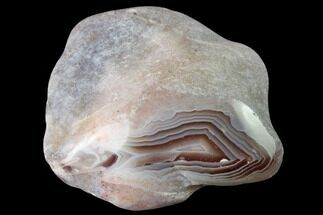 "1.9"" Polished Botswana Agate Nodule - Botswana, Africa For Sale, #167591"