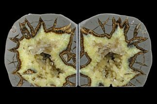 "Buy 4.6"" Wide, Crystal Filled Septarian Geode Bookends - Utah - #167887"