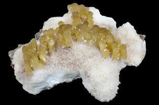 "6.4"" Yellow Calcite On Scolecite (Zeolite) Sprays - Maharashtra, India For Sale, #168716"