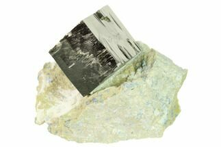 Pyrite - Fossils For Sale - #168501