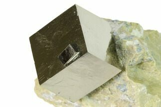 Pyrite - Fossils For Sale - #168504