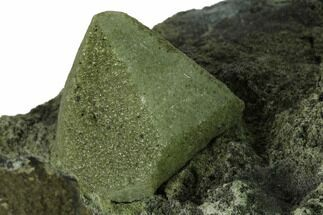"Buy 5.5"" Green Calcite Crystal on Black Chalcedony Matrix - New Find! - #169051"