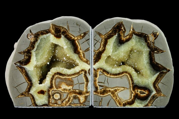 "4.4"" Tall, Crystal Filled Septarian Geode Bookends - Utah"