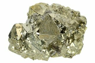 Pyrite  - Fossils For Sale - #173502