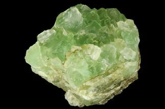 "2.4"" Light-Green, Cubic Fluorite Crystal Cluster - Morocco For Sale, #174005"