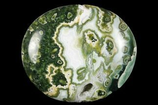 Ocean Jasper - Fossils For Sale - #174081