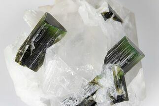 Elbaite Tourmaline, Quartz & Albite var. Cleavelandite - Fossils For Sale - #175536