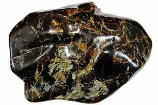 "11.3"" Wide Piece Of Polished Indonesian Amber - Massive! For Sale, #176132"