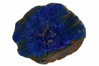 "Buy 1.48"" Vivid Blue, Cut/Polished Azurite Nodule - Siberia - #175552"