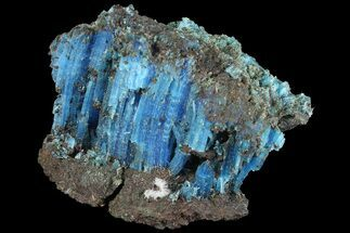 Chalcanthite - Fossils For Sale - #176463