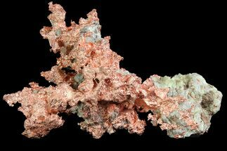 "Buy 3.6"" Natural, Native Copper Formation - Michigan - #177217"