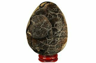 "3.25"" Septarian ""Dragon Egg"" Geode - Black Crystals For Sale, #177389"