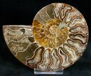 "4.4"" Polished Ammonite Pair With Crystal Pockets - #11792-3"