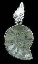 Buy Pyritized Ammonite Fossil Pendant - Sterling Silver - #21010